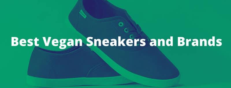 Best Vegan Sneakers and Brands